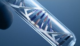Genomic Medicine in Clinical Practice: Era of Personalized Medicine