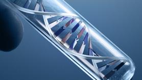 Genomic Medicine in Clinical Practice: Era of Personalized Medicine