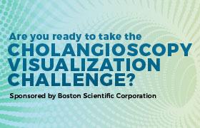 Cholangioscopy Visualization Challenge