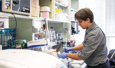 Sadelain in lab