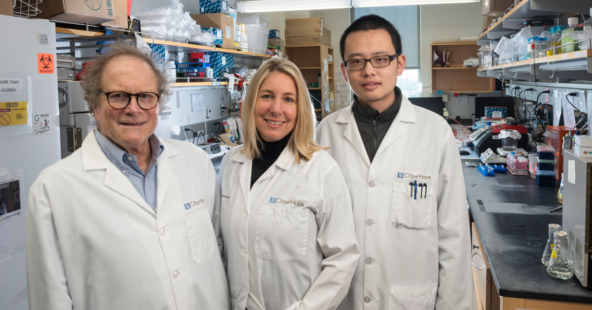 Michael E. Barish, PhD (left), Christine E. Brown, PhD, and Dongrui Wang, PhD, worked together to develop the CLTX- CAR T-cell therapy.