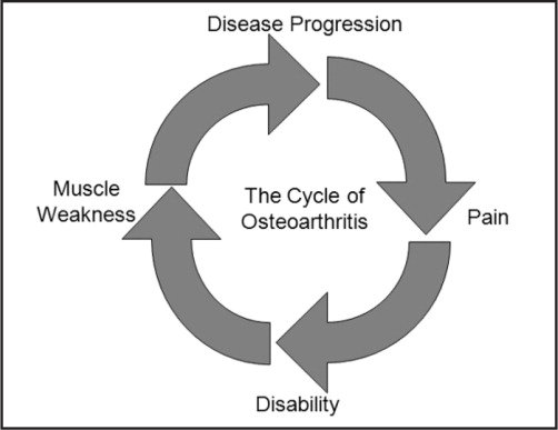 The Deteriorating Cycle of Osteoarthritic Symptoms, Leading to the Degeneration of Joint Mechanics.