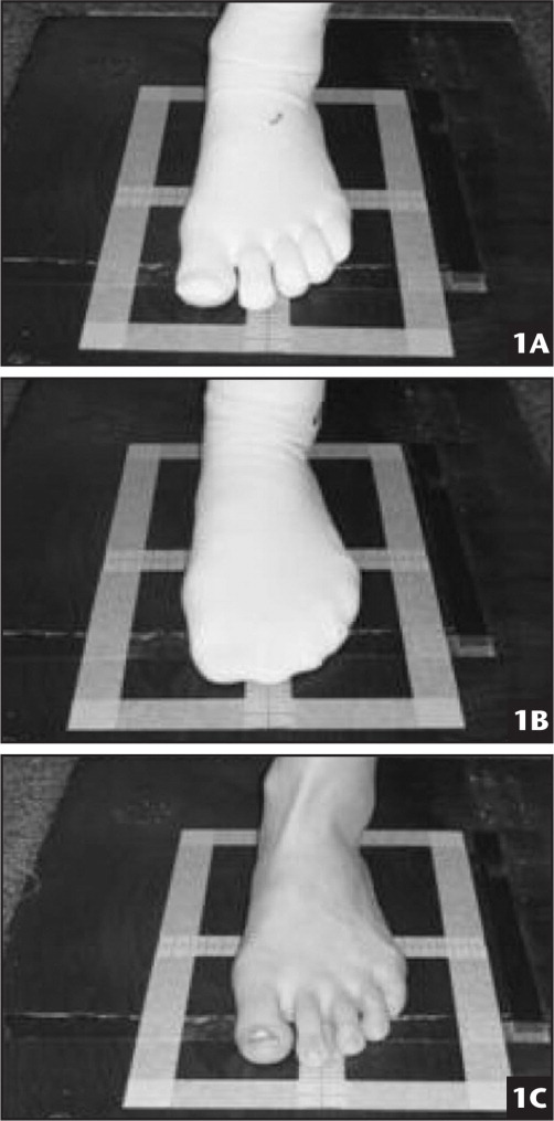 Sock conditions with single-limb balance tests. (A) 5-toed sock condition. (B) Regular sock condition. (C) No sock condition.