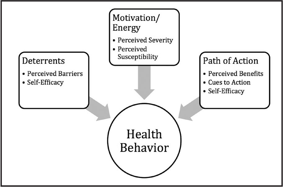 exercising and health belief model -the health belief model was one of the first models which adapted  to make healthy decisions applied to health behaviors smoking, exercising,.