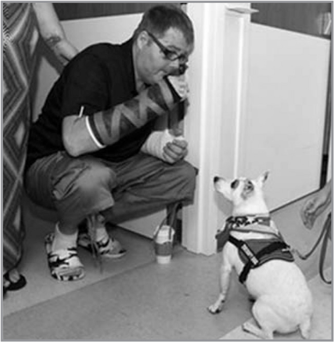 Patient John Nice gives a treat to Pepe (Pepperoni), a therapy dog who visits Veteran patients at J.W. Ruby Memorial Hospital, Morgantown, West Virginia (photograph courtesy of Daniel Shrensky).