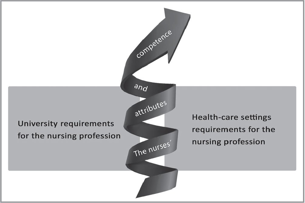 The interaction between the nurses' attributes, required competences, and requirements of the nursing profession, such as expected qualifications.