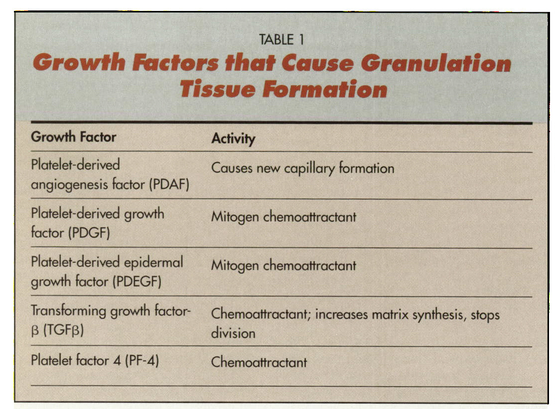 TABLE 1Growth Factors that Cause Granulation Tissue Formation