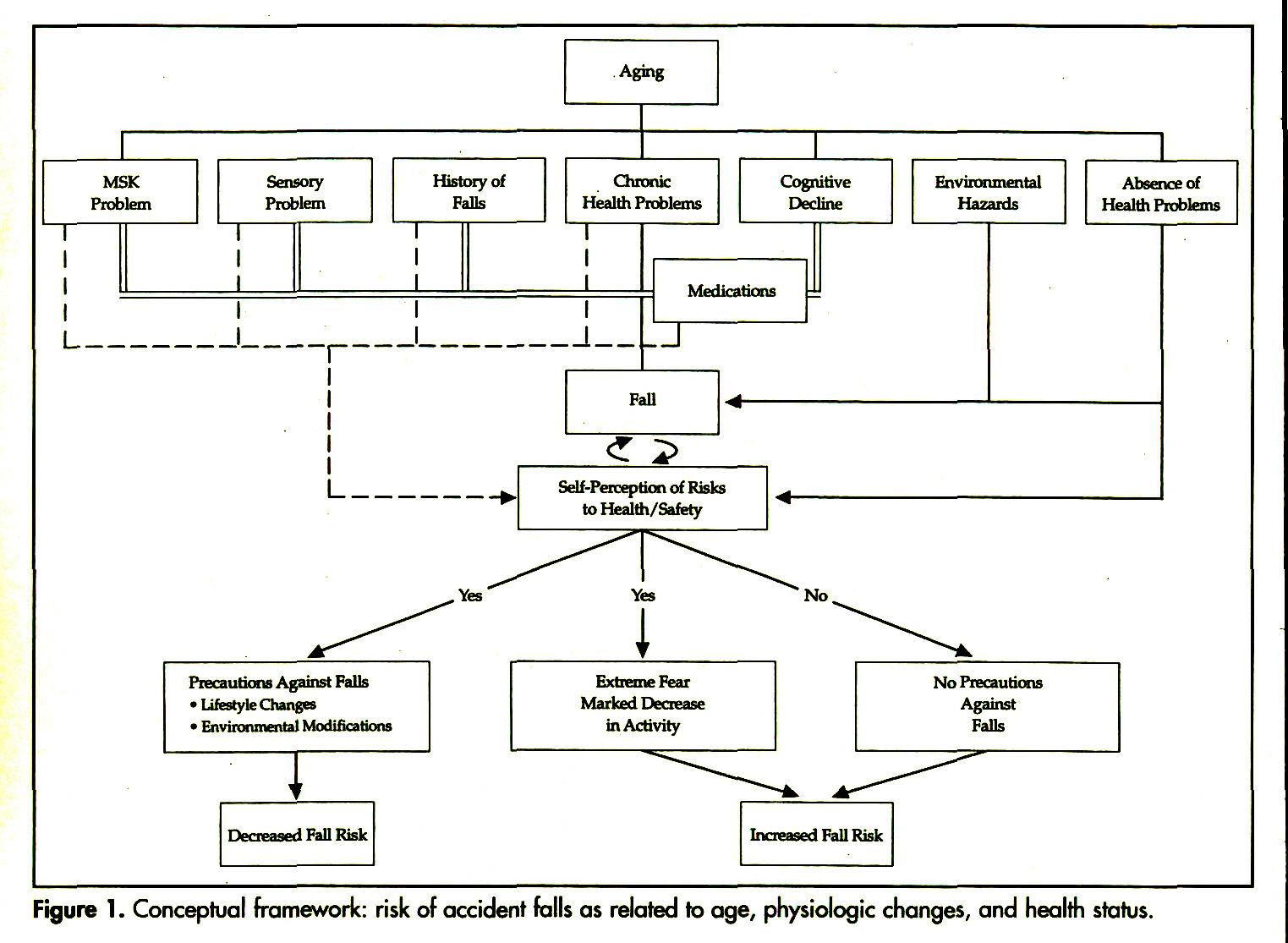 Figure 1 . Conceptual framework: risk of accident falls as related to age, physiologic changes, and health status.