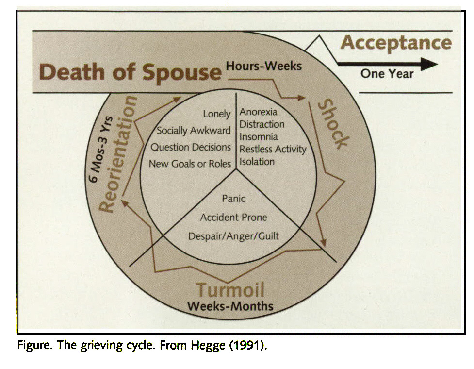 Figure. The grieving cycle. From Hegge (1991).