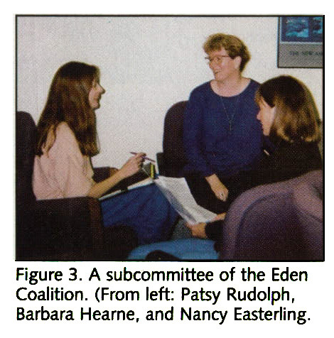 Figure 3. A subcommittee of the Eden Coalition. (From left: Patsy Rudolph, Barbara Hearne, and Nancy Easterling.