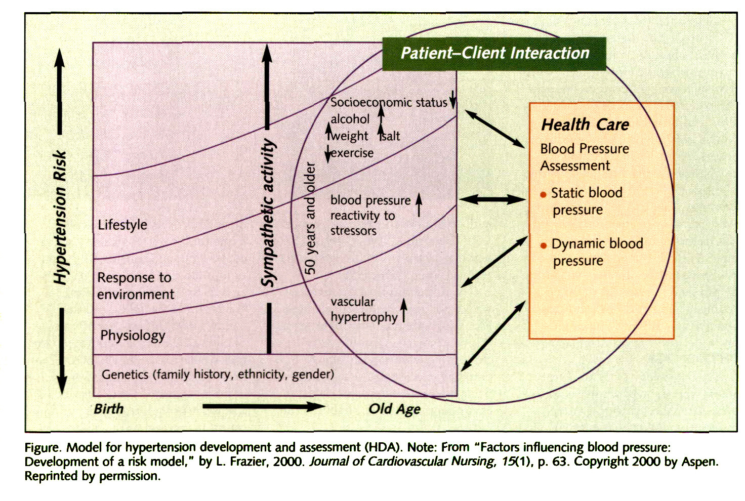"Figure. Model for hypertension development and assessment (HDA). Note: From ""Factors influencing blood pressure: Development of a risk model,"" by L. Frazier, 2000. Journal of Cardiovascular Nursing, 75(1), p. 63. Copyright 2000 by Aspen. Reprinted by permission."