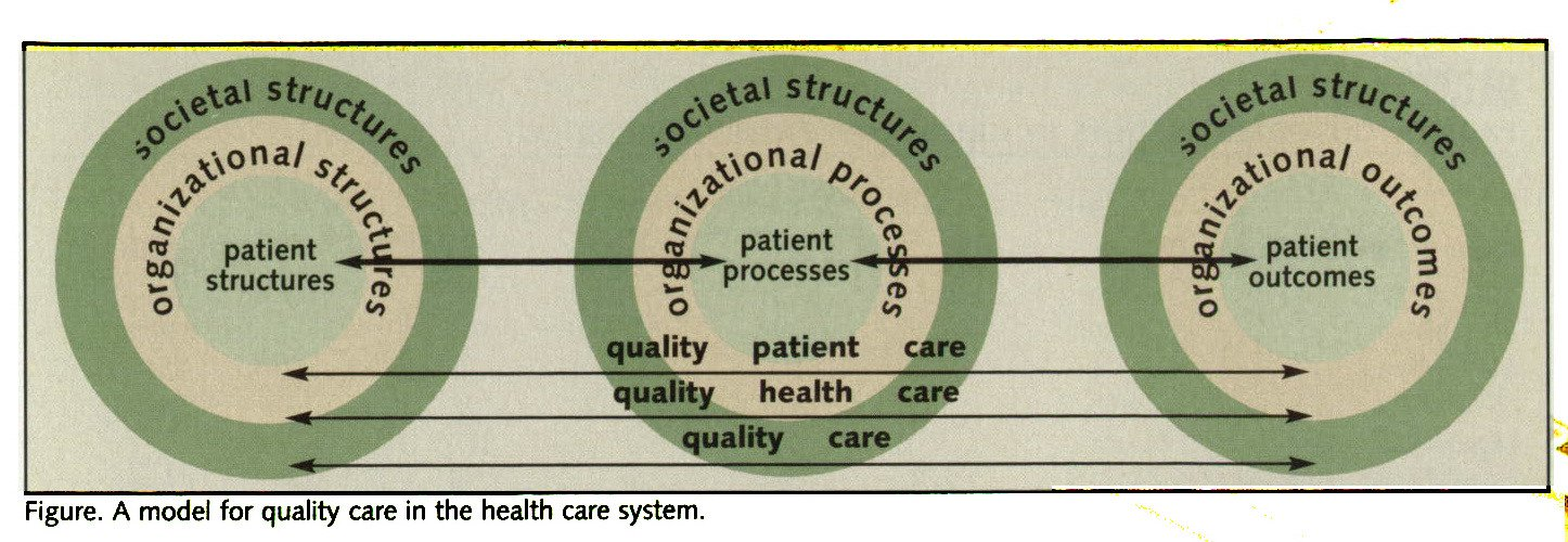 Figure. A model for quality care in the health care system.