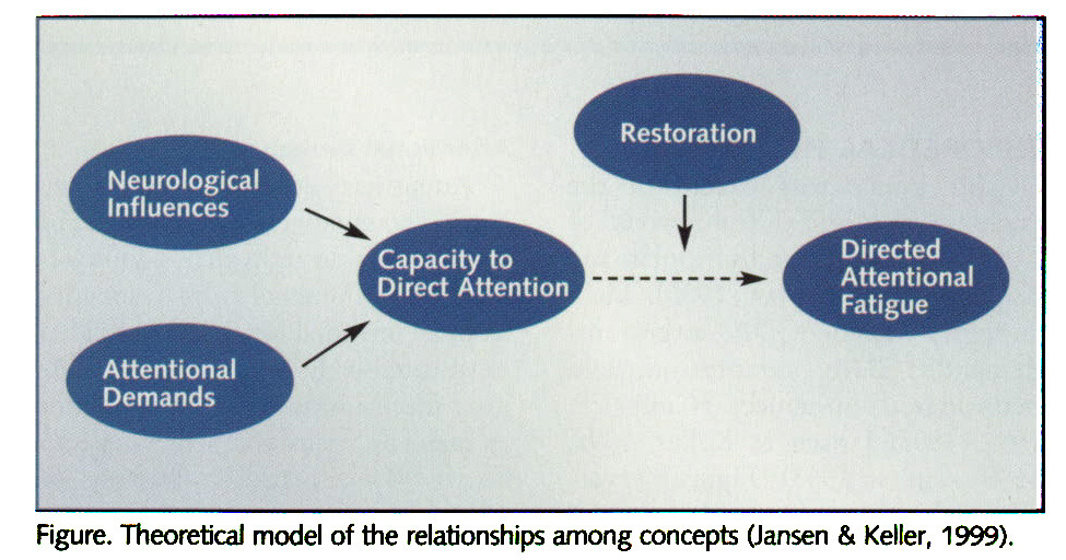 Figure. Theoretical model of the relationships among concepts (Jansen & Keller, 1999).