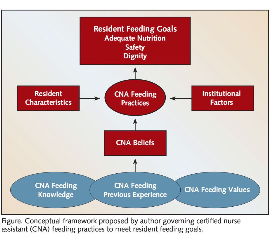 Figure. Conceptual framework proposed by author governing certified nurse assistant (CNA) feeding practices to meet resident feeding goals.