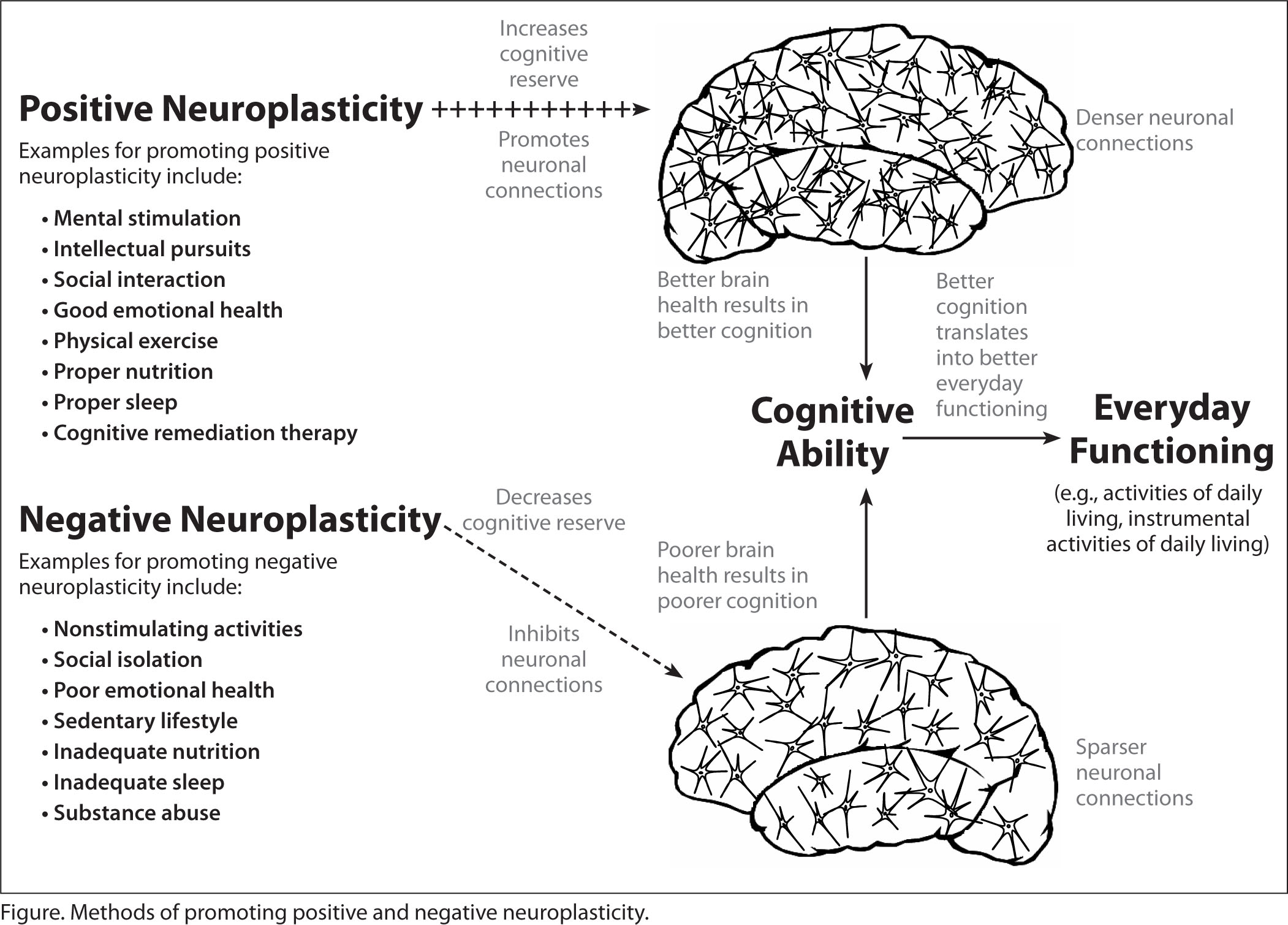 Methods of Promoting Positive and Negative Neuroplasticity.