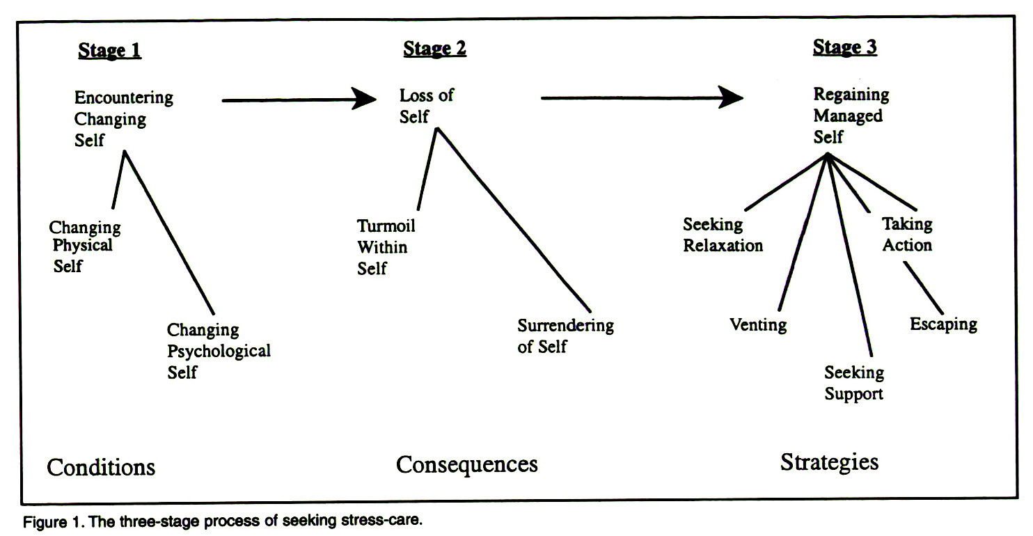 Figure 1 . The three-stage process of seeking stress-care.