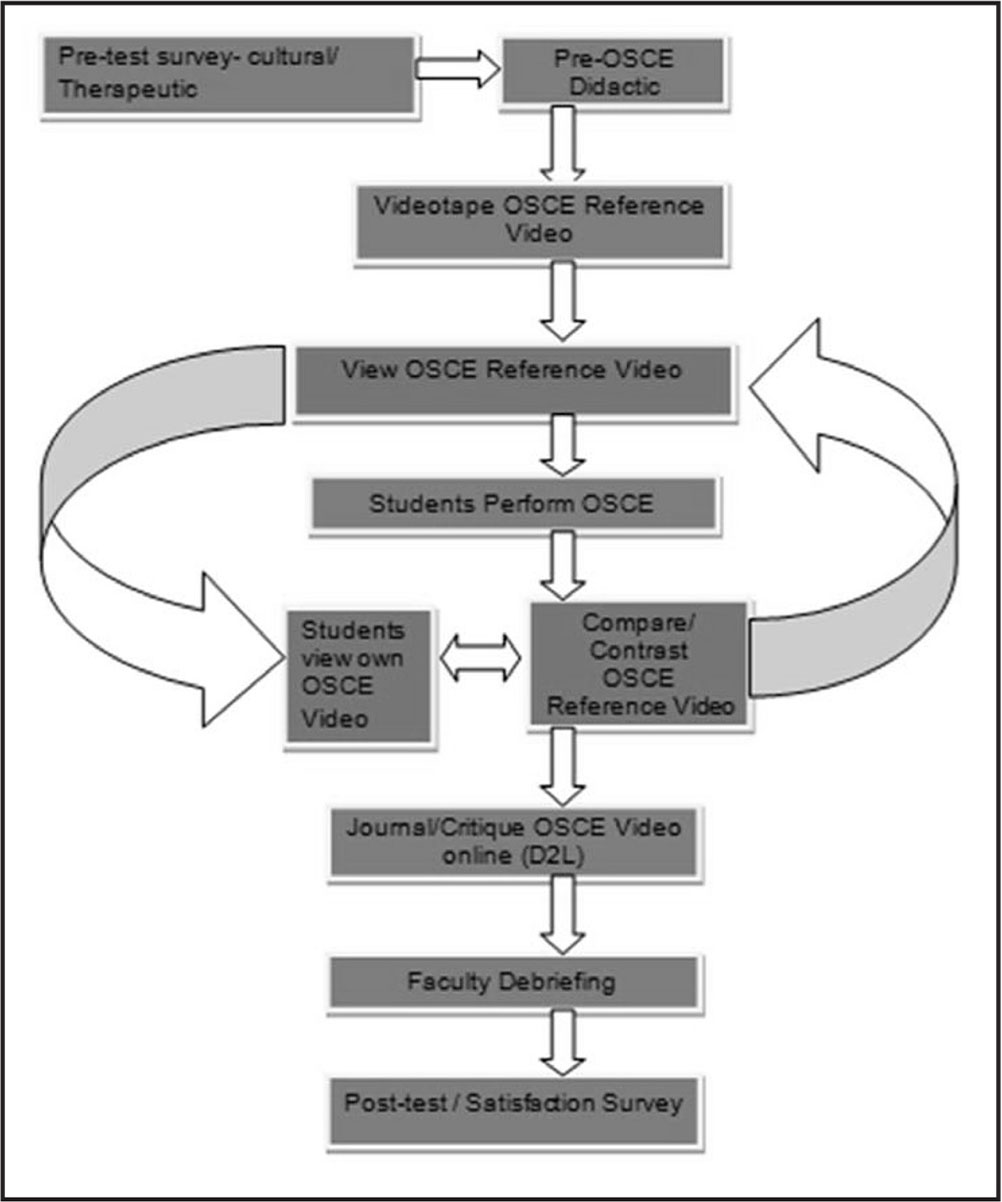 Objective Structured Clinical Examination (OSCE) experience flow chart indicating the various steps involved in the project.