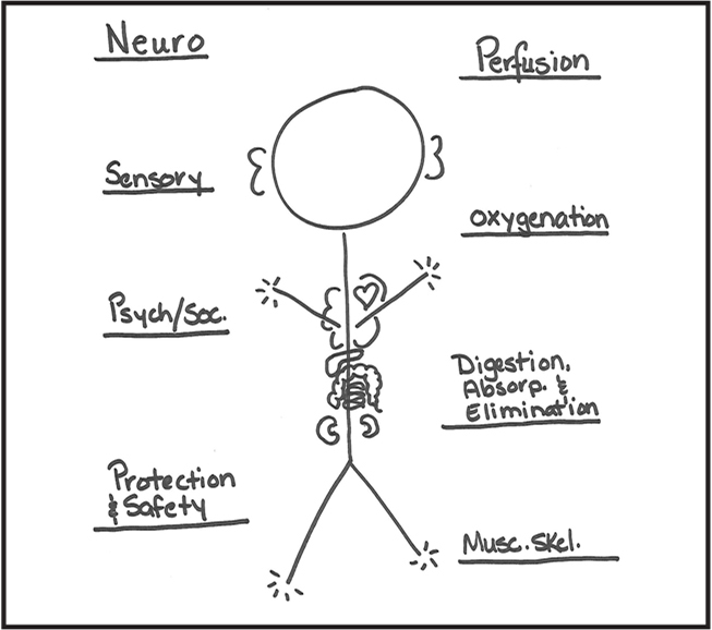 Purcell Clinical Reasoning Tool. This figure is a blank representation of the hand-drawn clinical reasoning tool.