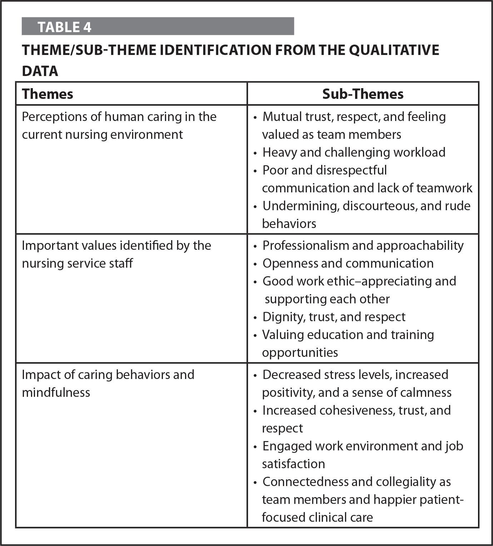 Theme/Sub-Theme Identification from the Qualitative Data