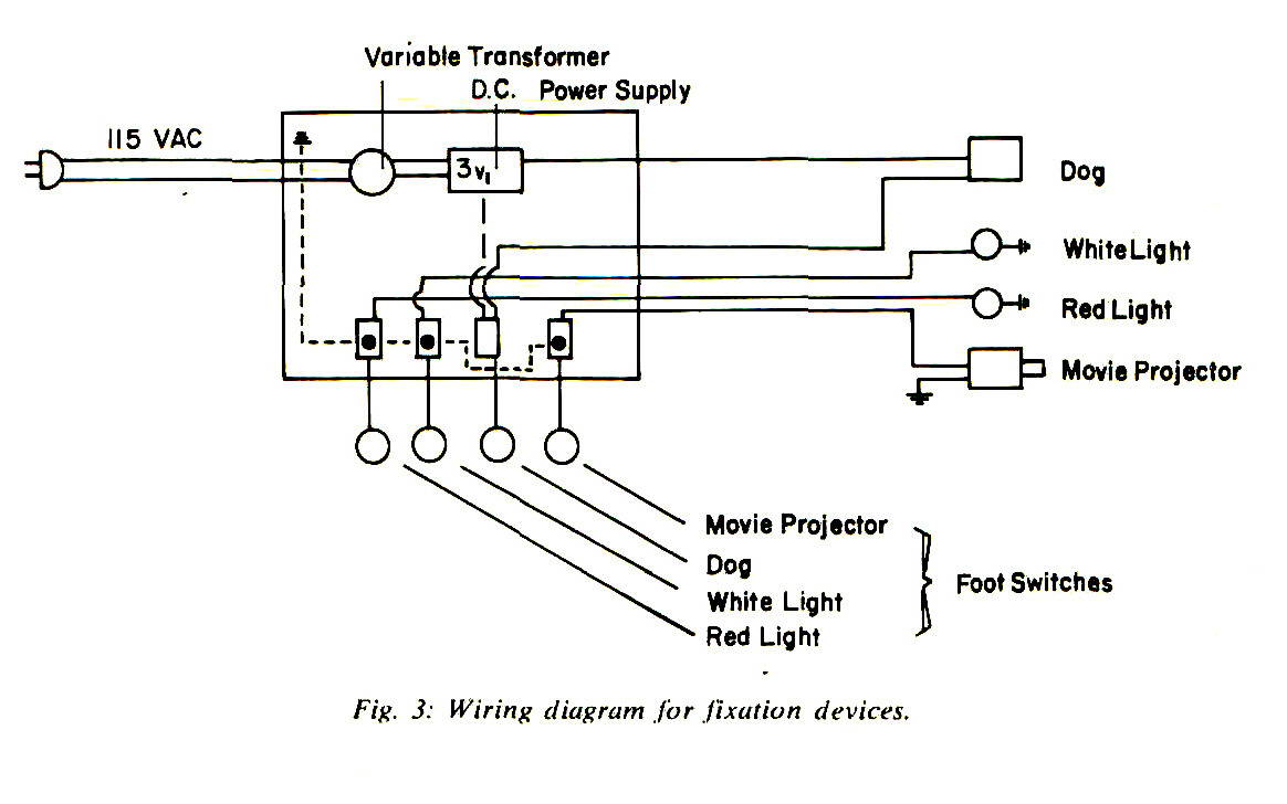 A Distant Fixation Device For Children Variable Transformer Wiring Diagram Fig S Devices