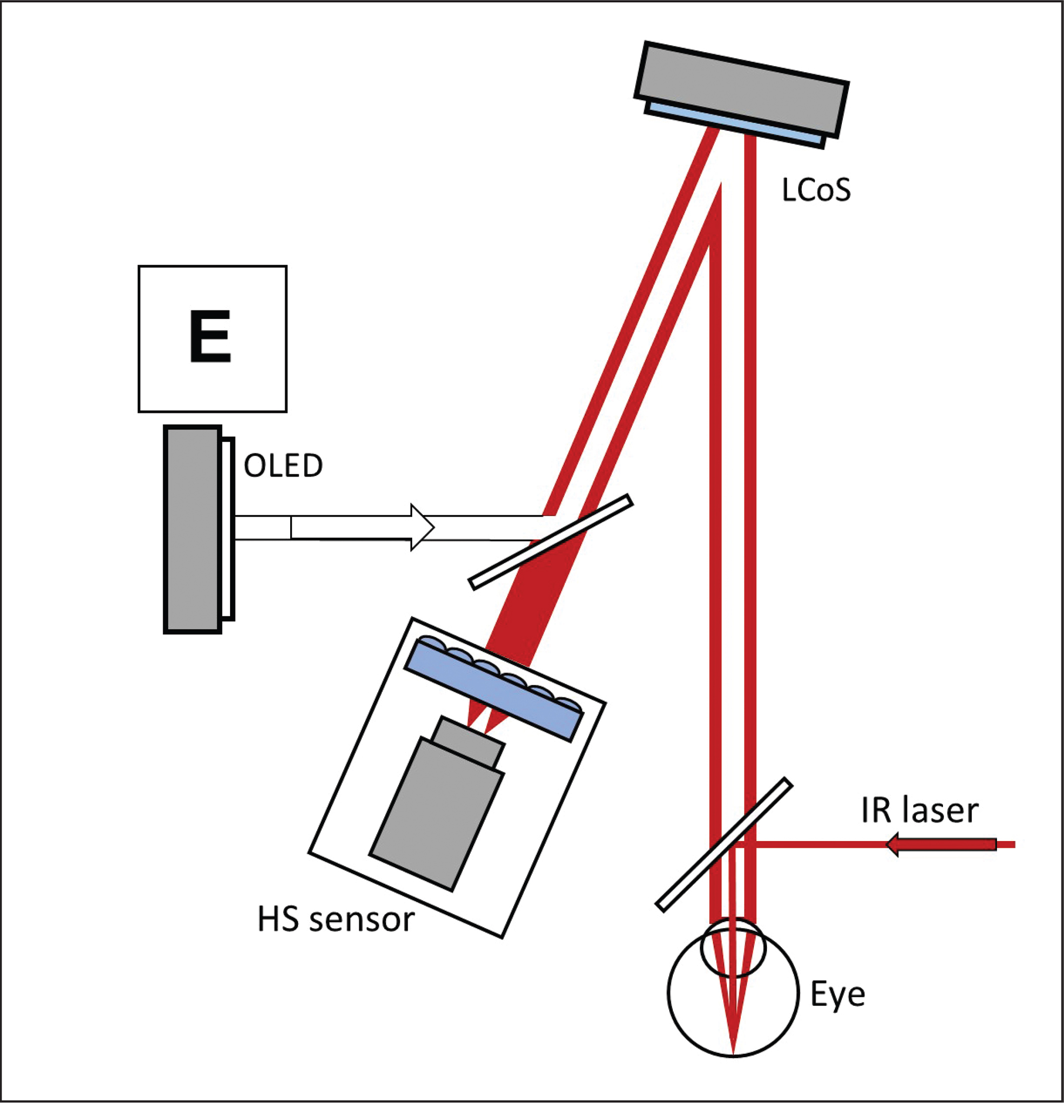 Optical scheme of VAO instrument (Voptica, SL, Murcia, Spain). A Hartmann-Shack (HS) system is used to measure the ocular aberrations with a 780-nm laser beam (IR LED). A spatial light modulator (LCoS) induces any optical phase profile while the eye is seeing a visual test displayed by a screen (OLED).