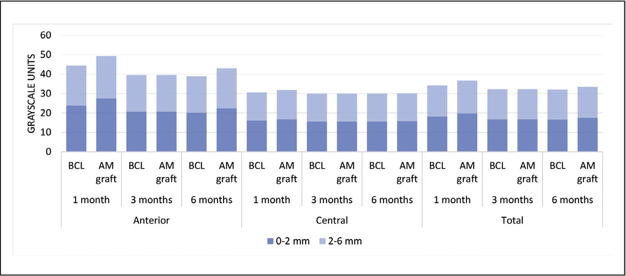 Corneal densitometry (corneal annulus and layer average) by treatment over time. AM = amniotic membrane; BCL = bandage contact lens