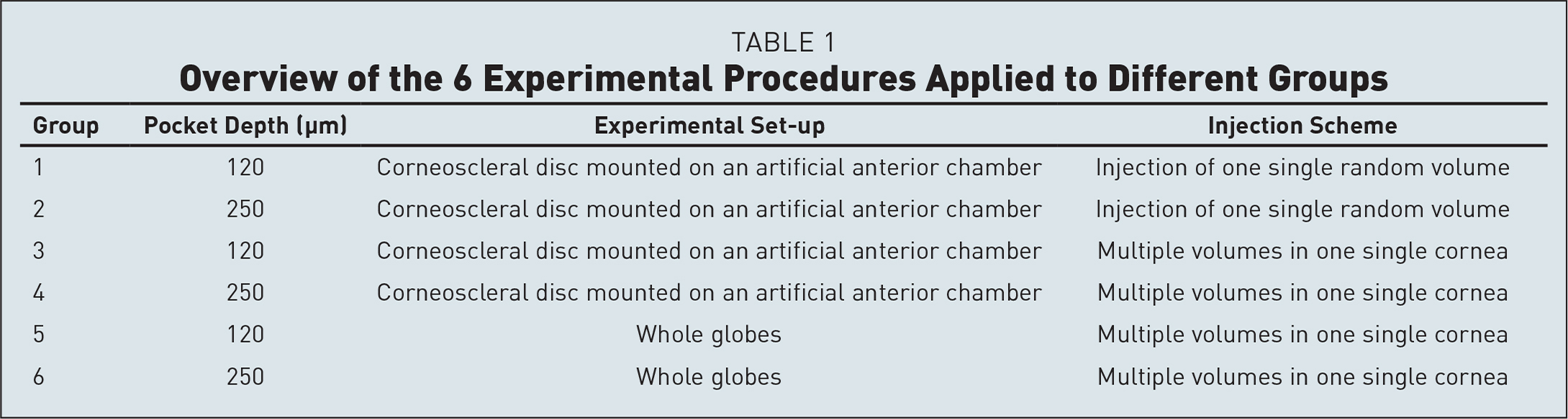 Overview of the 6 Experimental Procedures Applied to Different Groups