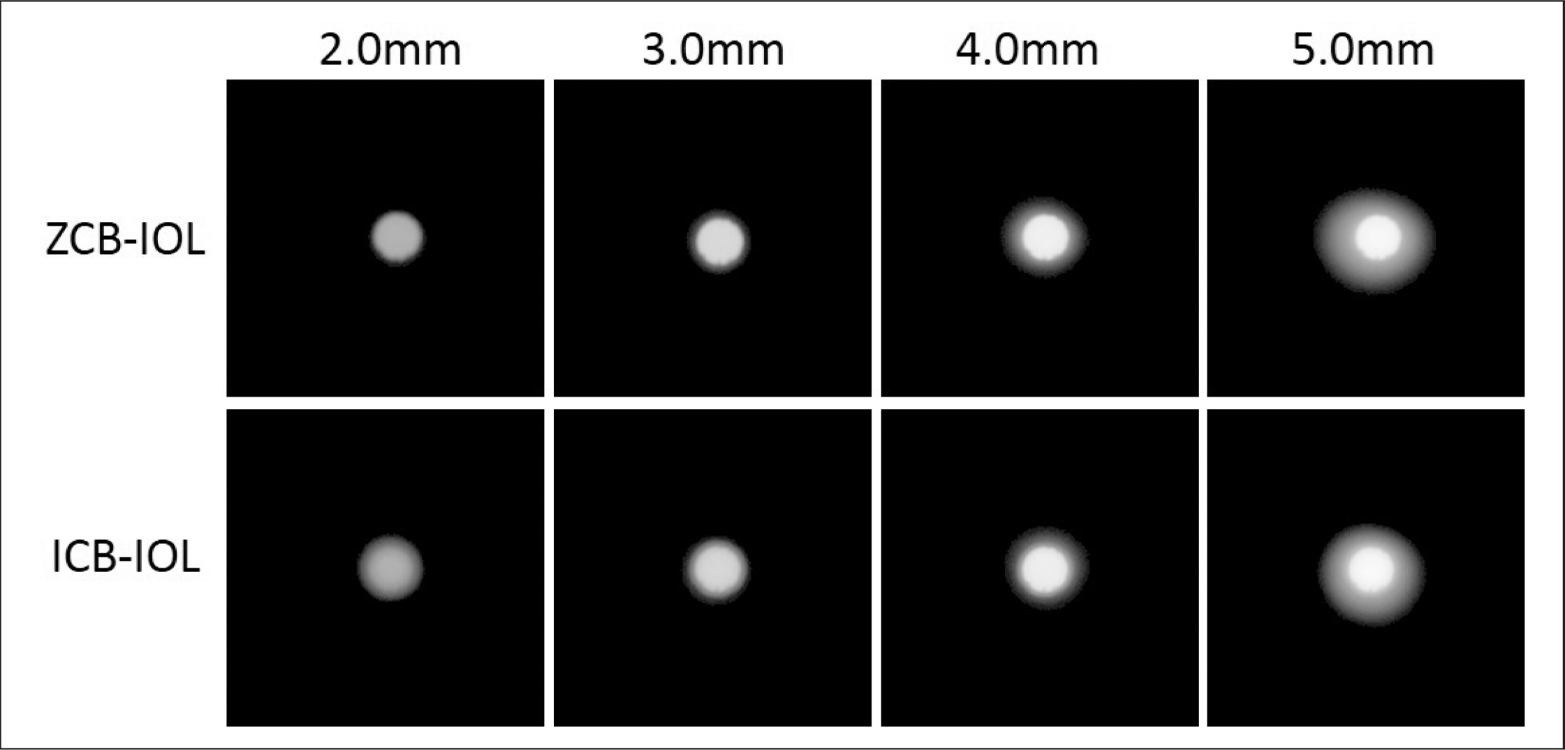 Images of the pinhole object formed by the model eye including either ZCB-IOL or ICB-IOL (Johnson & Johnson Vision, Inc) at their best focus for increasing pupil sizes. The images are displayed in logarithmic scale of intensity.