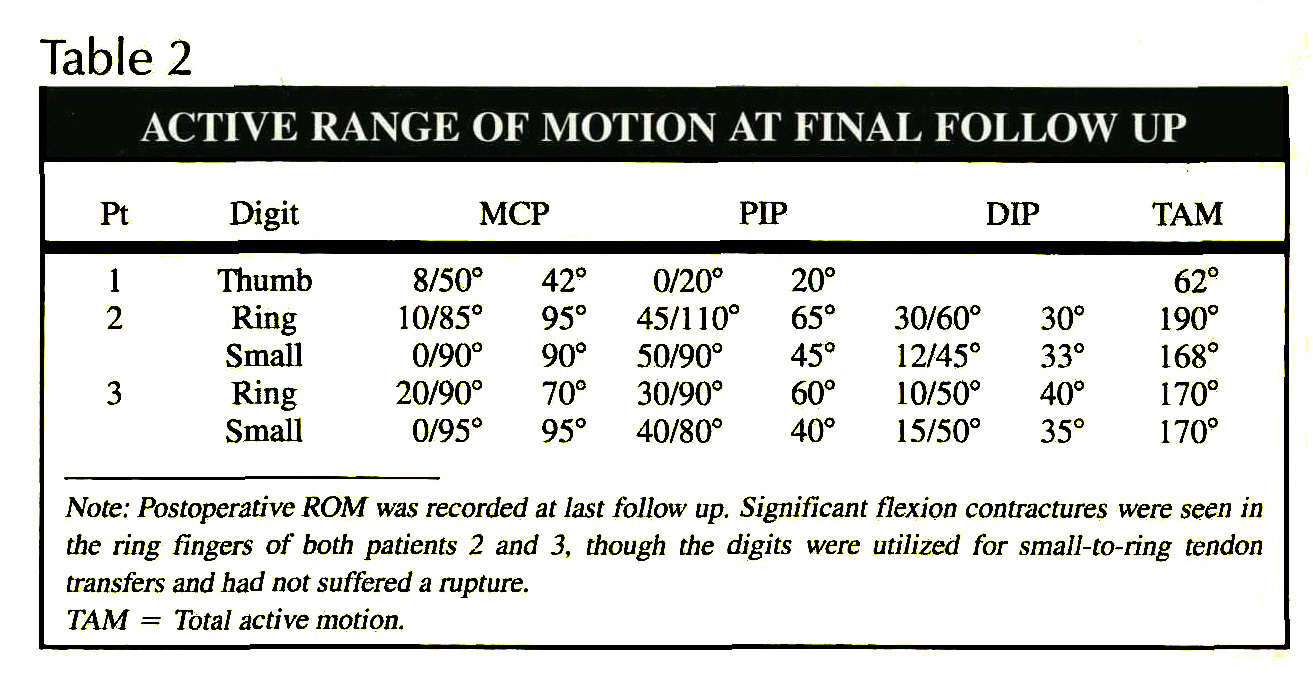 Table 2ACTIVE RANGE OF MOTION AT FINAL FOLLOW UP