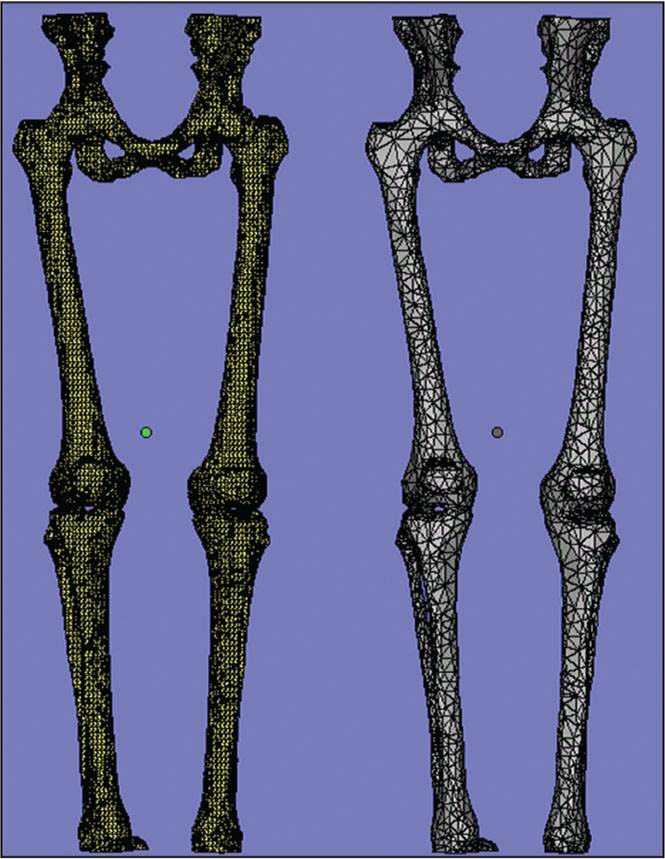 Geometric representation of the lower extremities using triangles. The image on the left has more triangles and thus is a more accurate (detailed) representation compared with the right.