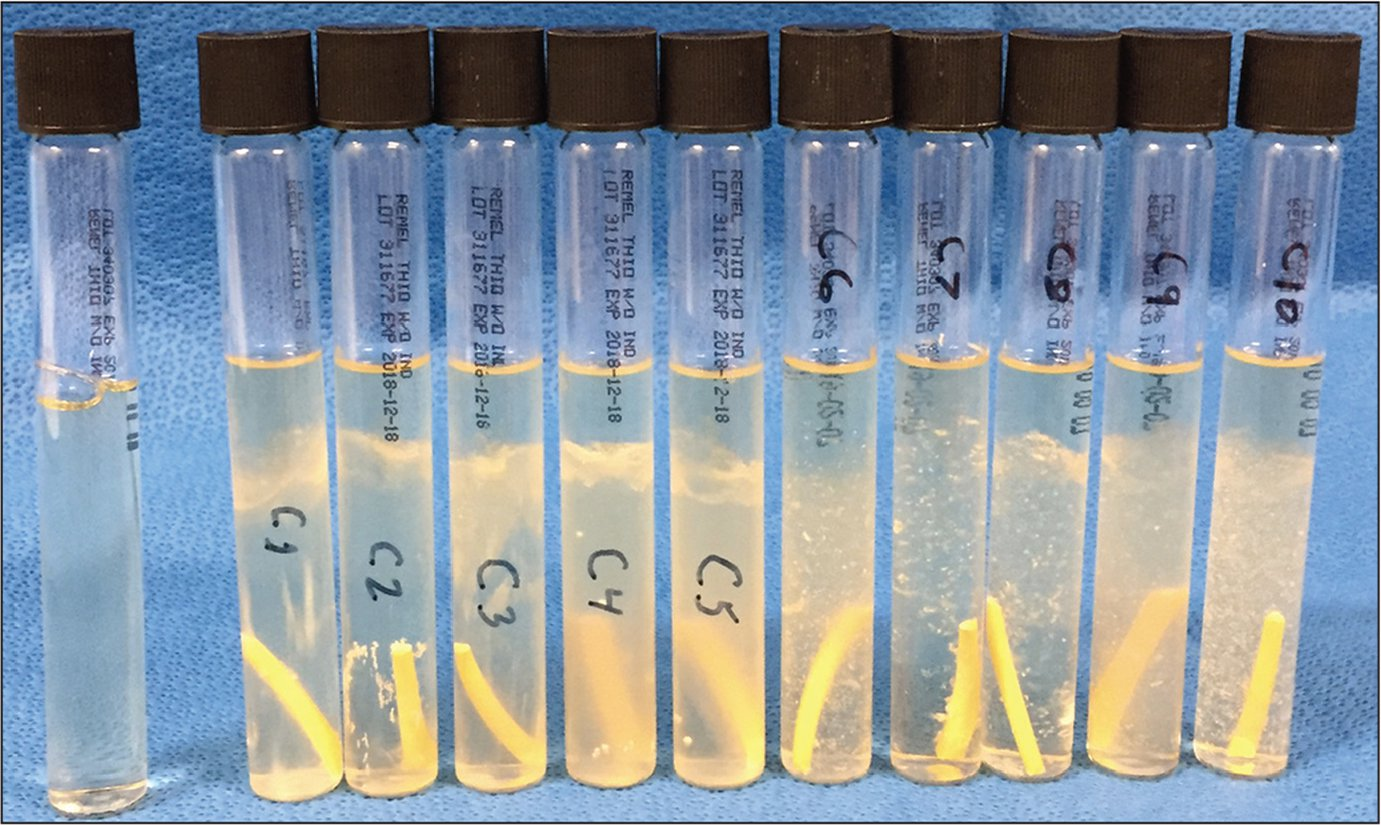 An unopened thioglycollate tube is demonstrated on the left with the 10 control samples showing positive growth at 1 week.