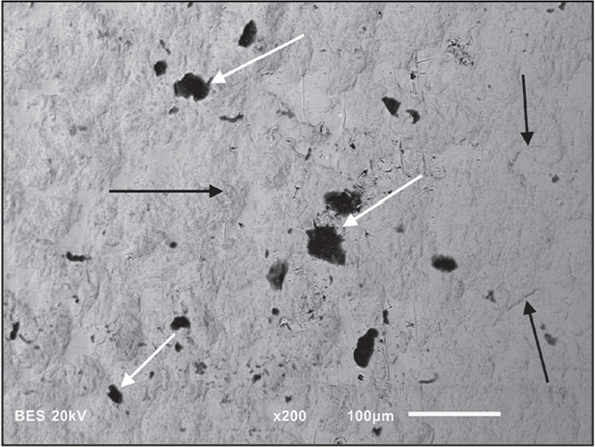 Scanning electron microscopy imaging of rod surfaces from Figure 1. Corrosion pits (white arrows) surrounded by biofilm. The center pits showed additional crevice corrosion (black arrows) where the biofilm had been removed, thus exposing the substrate surface and titanium crystal grains and grain boundaries.