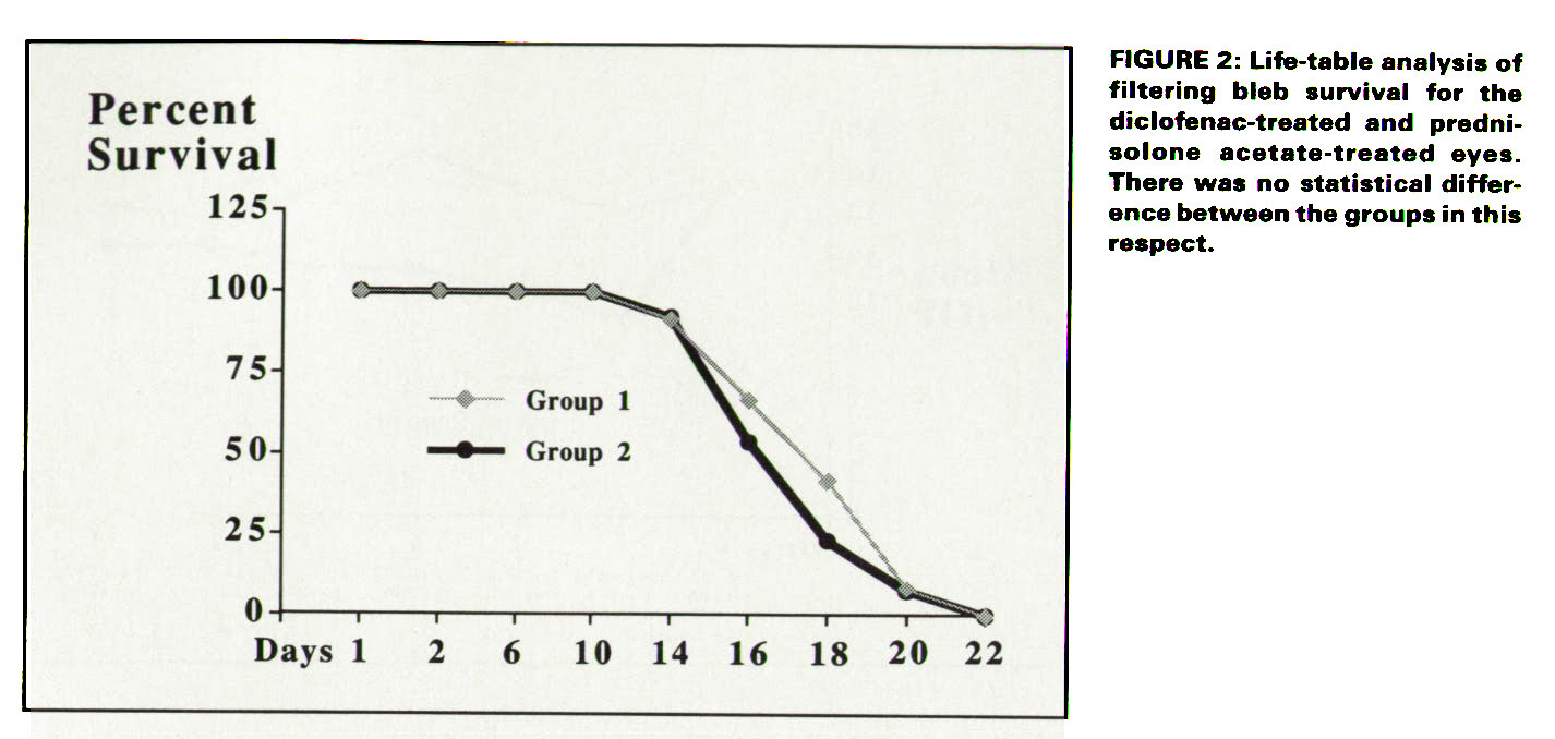 differin ebay uk