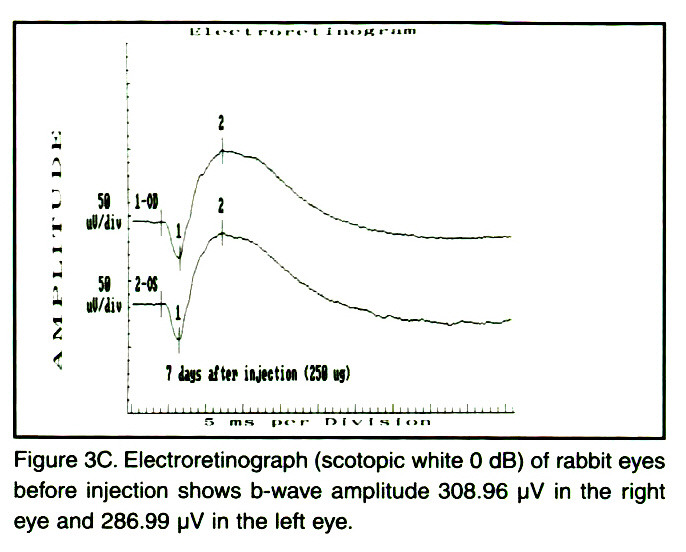 Figure 3C. Electroretinograph (scotopic white O dB) of rabbit eyes before injection shows b-wave amplitude 308.96 µV in the right eye and 286.99 µV in the left eye.