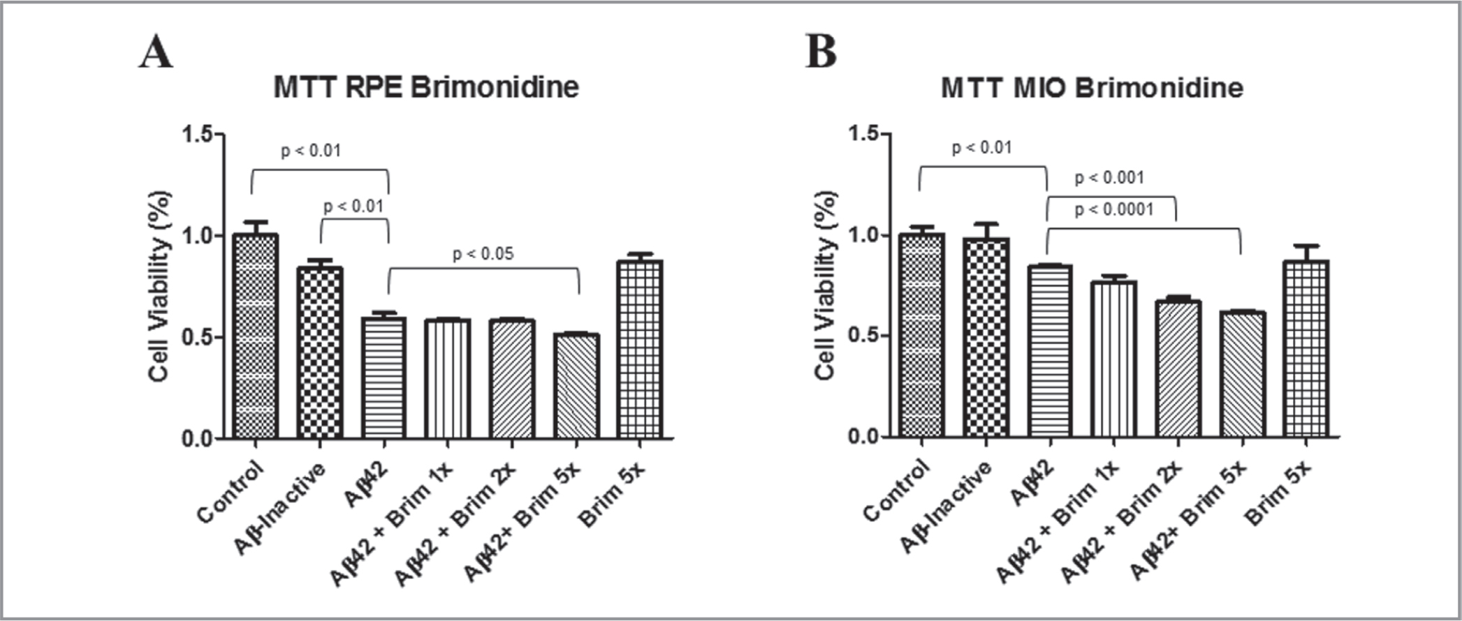 Cell viability assay (MTT Assay). (A) Adult human retinal pigment epithelial (RPE) cells after pretreatment with 1×, 2×, and 5× concentrations of brimonidine and exposure to amyloid-beta 1–42 (Aβ42) 10μM. (B) Müller (MIO) cells after pretreatment with 1×, 2×, and 5× concentrations of brimonidine and exposure to Aβ42 10μM. Data are normalized to set control (untreated) samples at 100% of signal for comparison.