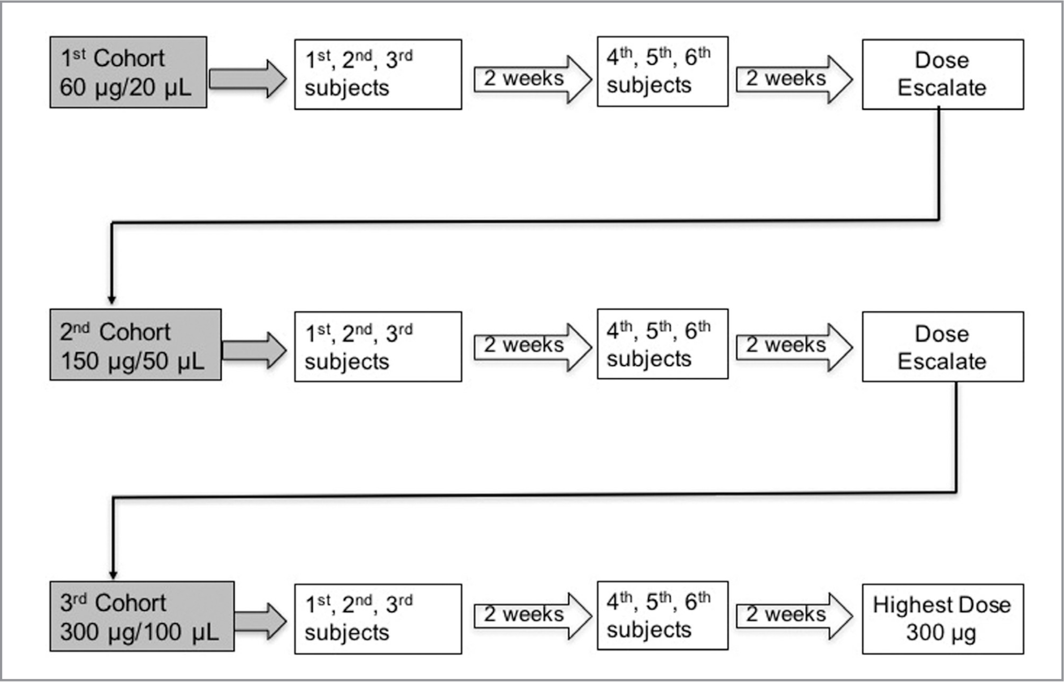 Schema of sequential enrollment into the phase 1 dose-escalation study. Six subjects were enrolled sequentially in each of the three dosing cohorts and received an intravitreal injection of different volumes of 3 mg/mL solution of ICON-1. The first cohort received a single injection of 20 μL/60 μg ICON-1, the second cohort received a single injection of 50 μL/150 μg ICON-1, and the third cohort received a single injection of 100 μL/300 μg ICON-1. The initial three subjects in each cohort had established neovascular age-related macular degeneration and could have had prior therapy, whereas subjects four, five, and six were more recently diagnosed and treatment-naïve. The maximum tolerated dose was defined as the dose at which no more than one of six subjects had a significant ocular safety event.