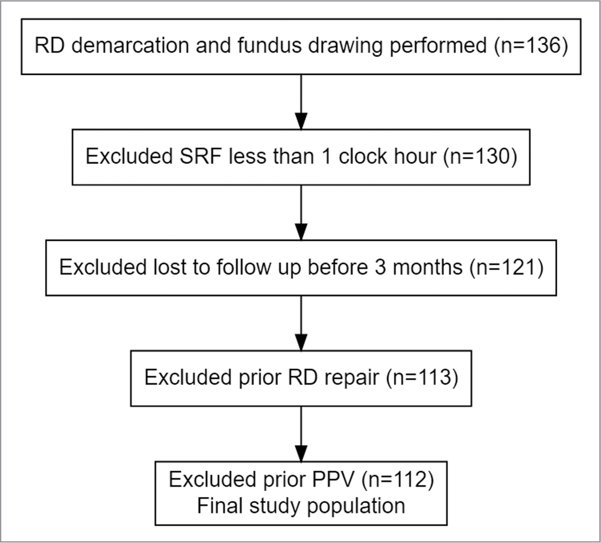 Inclusion and exclusion criteria applied to the study population. RD = retinal detachment; SRF = subretinal fluid; PPV = pars plana vitrectomy