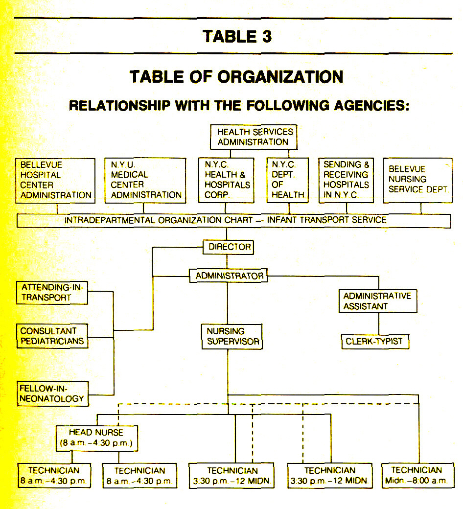 TABLE 3TABLE OF ORGANIZATION