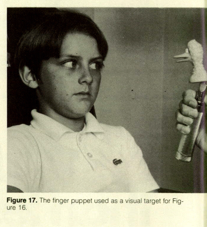 Figure 17. The finger puppet used as a visual target for Figure 16.
