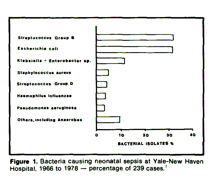 Figure 1. Bacteria causing neonatal sepsis at Yale-New Haven Hospital, 1966 to 1978 - percentage of 239 cases.'