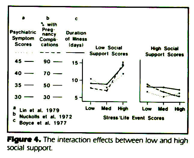 Figure 4. The interaction effects between low and high social support.
