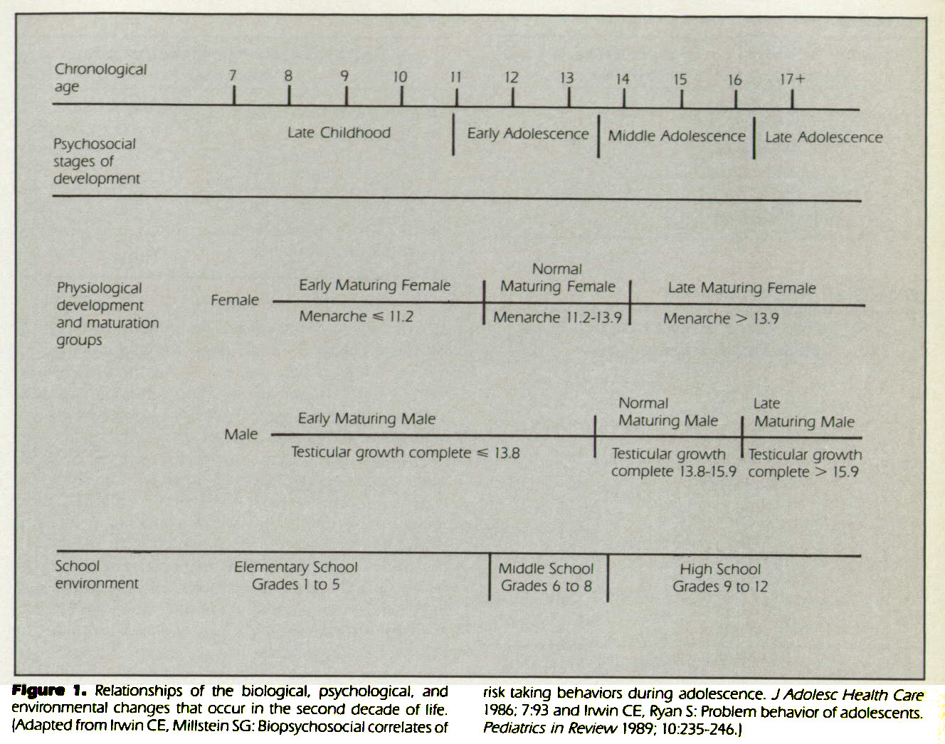 Figure 1. Relationships of the biological, psychological, and environmental changes that occur in the second decade of life. (Adapted from Irwin CE, Millstein SG: Biopsychosocial correlates of risk taking behaviors during adolescence. J Adolesc Health Care 1986; 7:93 and Irwin CE, Ryan S: Problem behavior of adolescents. Pediatrics in Review 1989; 10:235-246.)