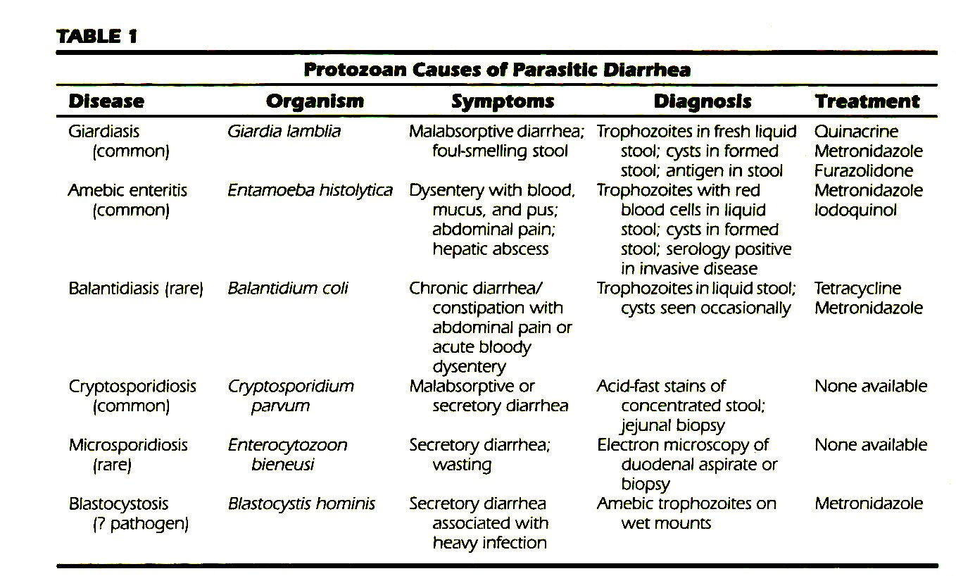 Parasitic Causes Of Diarrhea