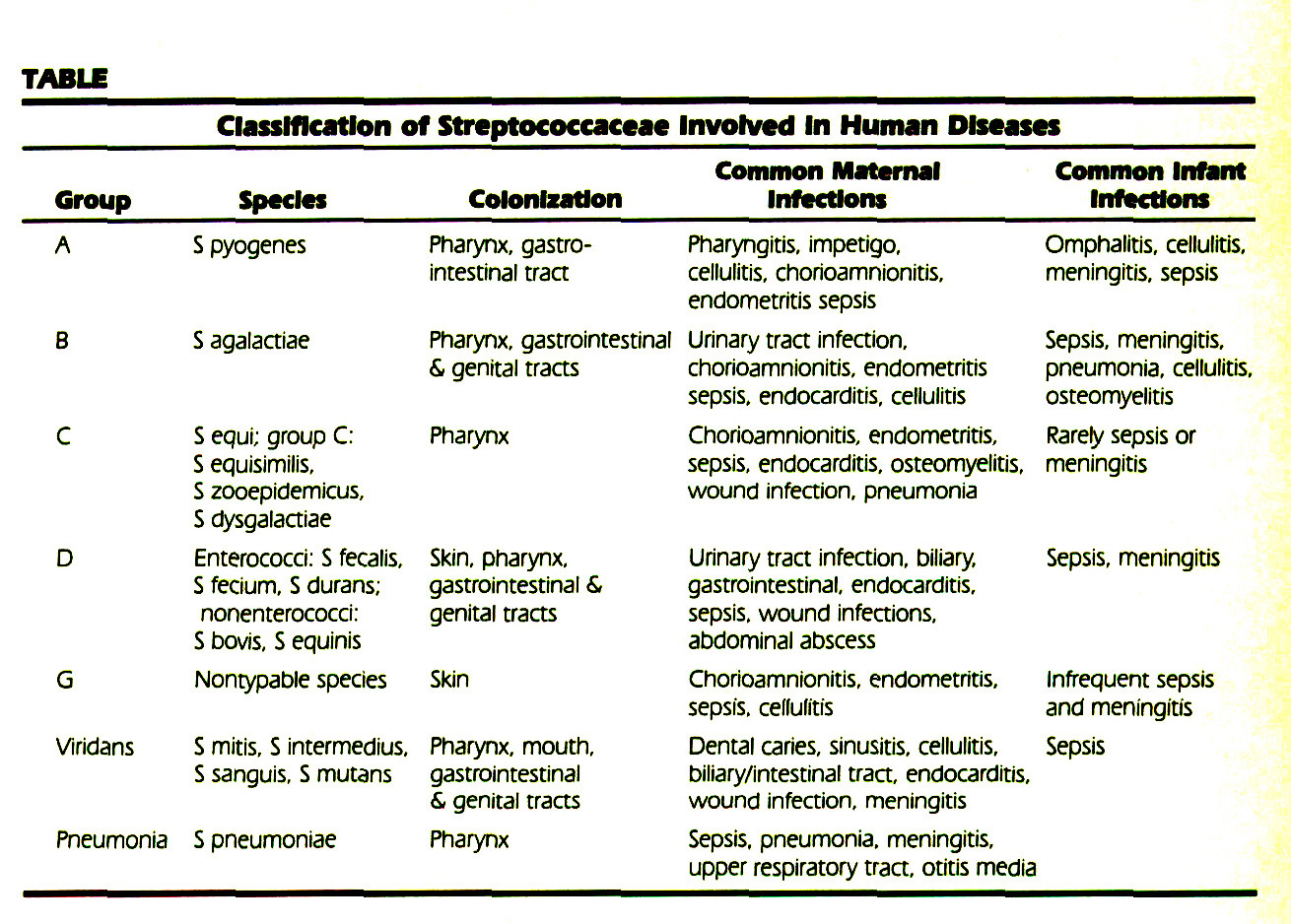 TABLEClassification of Streptococcaccac Involved In Human Diseases