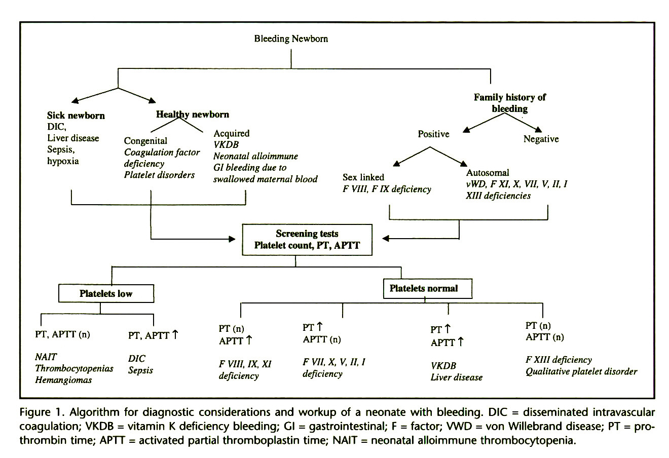 Figure 1 . Algorithm for diagnostic considerations and workup of a neonate with bleeding. DIC = disseminated intravascular coagulation; VKDB = vitamin K deficiency bleeding; Cl = gastrointestinal; F = factor; VWD = von Willebrand disease; PT = prothrombin time; APTT = activated partial thromboplastin time; NAIT = neonatal alloimmune thrombocytopenia.