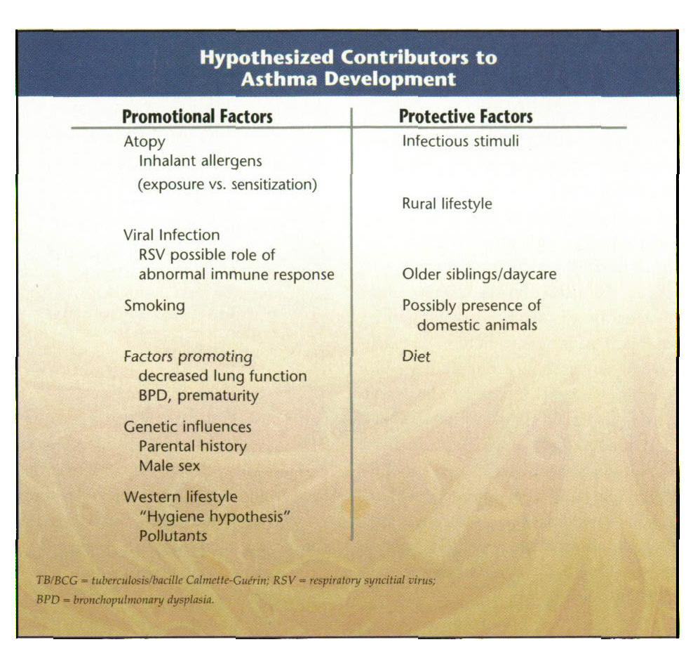 Hypothesized Contributors to Asthma Development