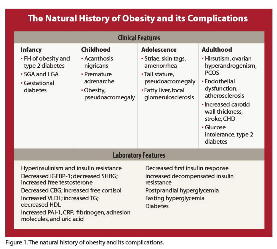 Figure 1. The natural history of obesity and its complications.