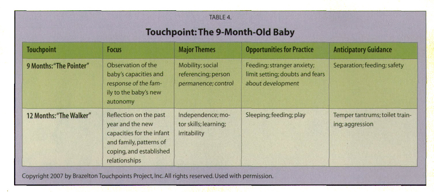 TABLE 4.Touchpoint:The 9-Month-Old Baby