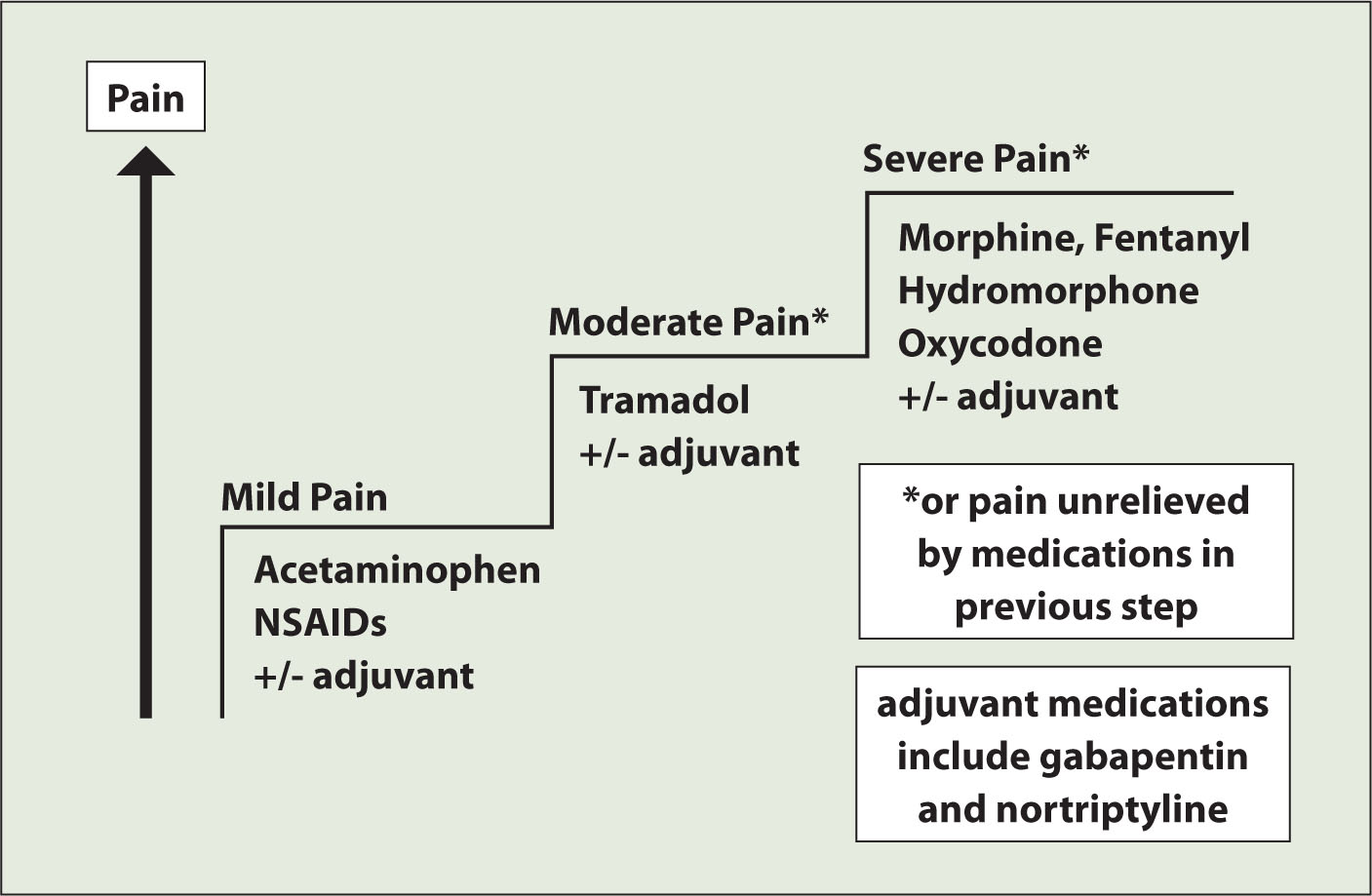 World Health Organization Pain Ladder.