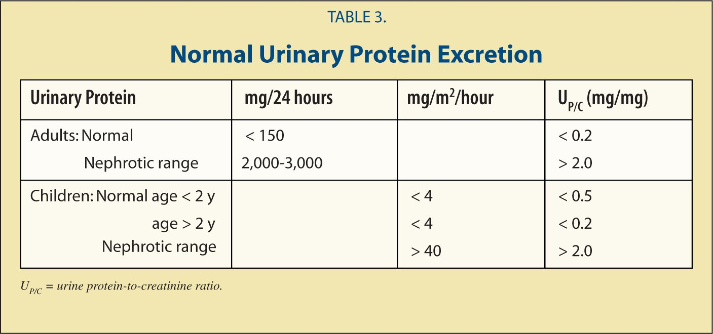 Normal Urinary Protein Excretion